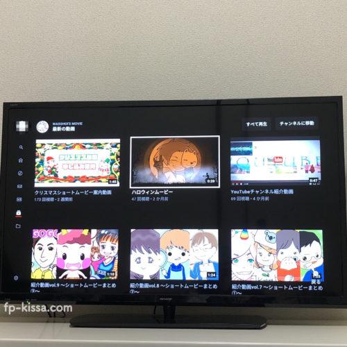 テレビの大画面でYouTubeが見れる。